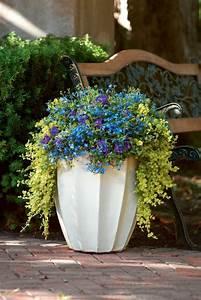 Garten Pflanzen : gartengestaltung tipps wie sie licht und schatten im garten verteilen ~ Eleganceandgraceweddings.com Haus und Dekorationen