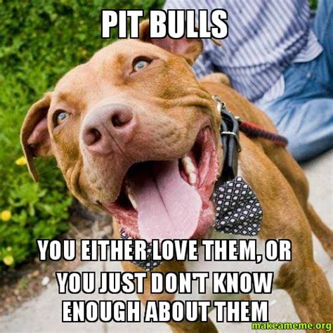 Pitbull Meme - pit bulls you either love them or you just don t know enough about them make a meme