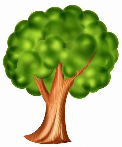 Tree Cartoon Clip Clipart 3d Effect Pistachio