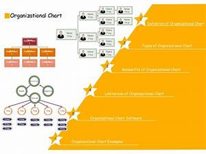 Org Chart Guide