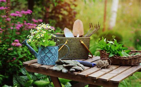 Dārza darbi jūnijā - Jauns.lv