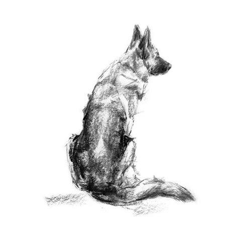 Kleurplaat Deir by German Shepherd Sitting Print By