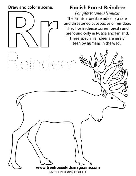 treehouse magazine reindeer adventure