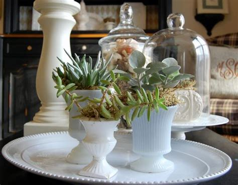 decorating with succulents decorating with succulents