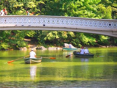 Central Park Boating Times by Ny Row Boats In Central Park I Photo New York