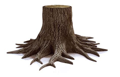Bomen snoeien wanneer