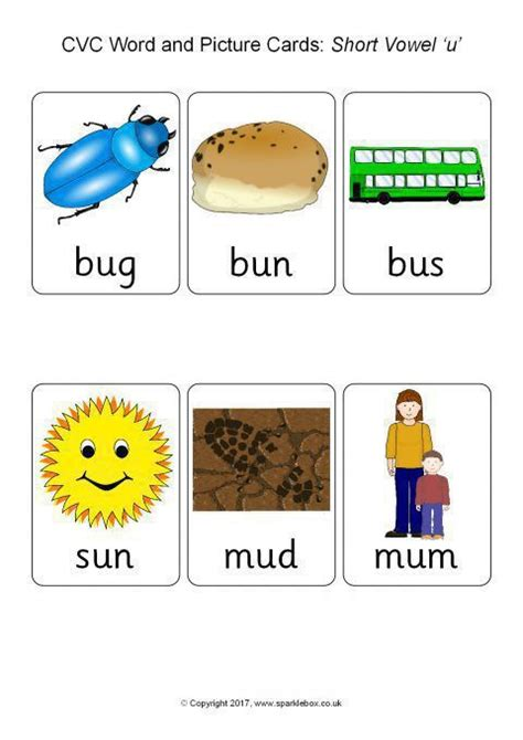 cvc word  picture cards short vowel  sb