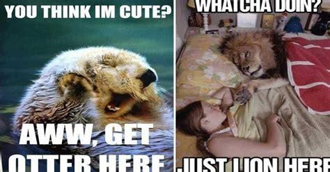 Animal Pun Meme - funny animal meme puns