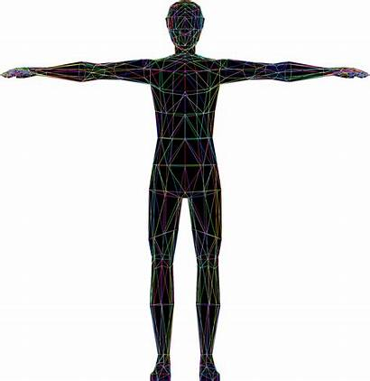 Clipart Wireframe Human Transparent Humans Poly Low