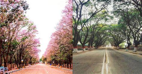 Instagram Photos Of Empty Bangalore During Lockdown - Best ...