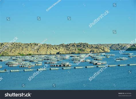 Lake Nasser Boats by Boats On Lake Nasser Stock Photo 86340466