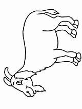 Goat Pages Coloring Colouring Printable Sheet Sheets Cliparts Clipart Mountain Cartoon Goat2 Activity Children Library Coloringpages101 Popular Clip Site sketch template