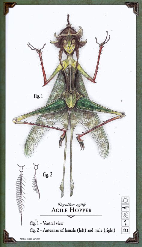 Image 06 Spiderwick Chronicles Wiki Fandom