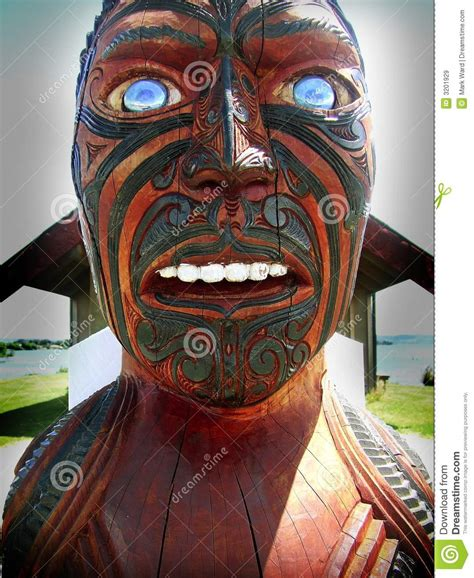 maori culture stock image image  rotorua pacific