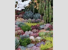 The Australian Garden Show, Sydney 2014 ecoorganic