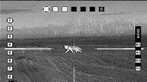 Petition  U00b7 Legalize The Use Of Thermal Imaging  Night Vision Optics For Predator  Hog Hunting In