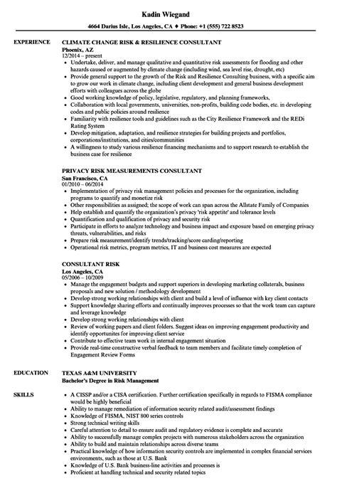consultant risk resume sles velvet