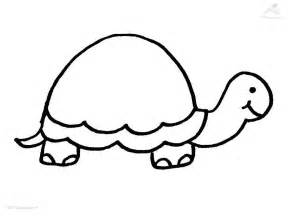 HD wallpapers coloring page of yertle the turtle