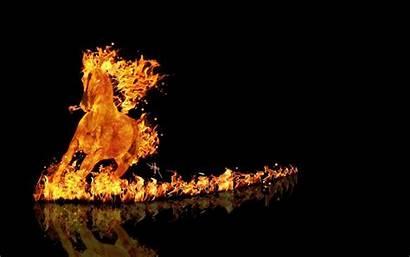 Unicorn Fire Desktop Unicorns Animated Cats Wallpapers