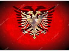 Gold Albania Flag — Stock Photo © darrenw #5545573