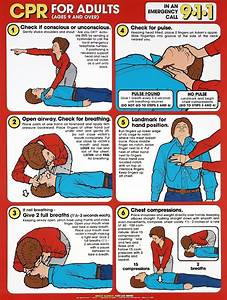 Cpr For Adults  Children