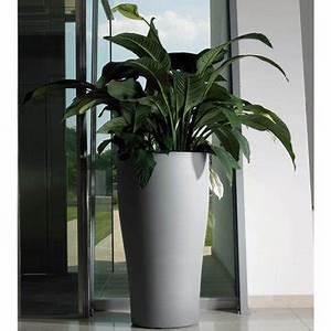 Pot Pour Plante Intérieur : pot d int rieur fleuriste bulldo ~ Melissatoandfro.com Idées de Décoration