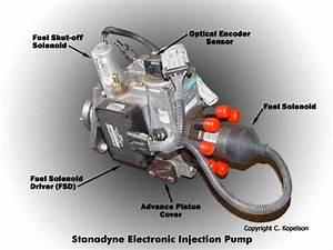 6 5 Diesel Wiring Harnes