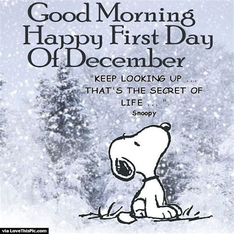 Good Morning Happy First Day Of December Snoopy Quote. Love Quotes Zulu. Music Quotes Henry David Thoreau. Beach Quotes From Movies. Quotes About Change For Love. Confidence Wrestling Quotes. Strong Yourself Quotes. Sassy Like Quotes. Travel Quotes Roots