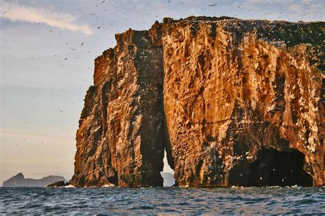 Rib Boat Westman Islands by 2 Hour Rib Boat Tour Of The Westman Islands Guide To Iceland