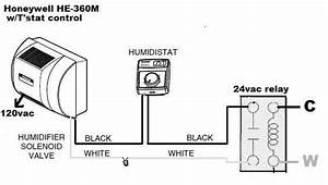 Run The He360 Humidifier On Low