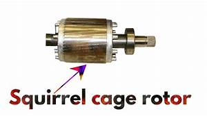 Squirrel Cage Motor Uses