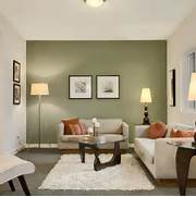 Photos Of Living Rooms With Green Walls by Green Accent Wall In Living Room For The Home Pinterest