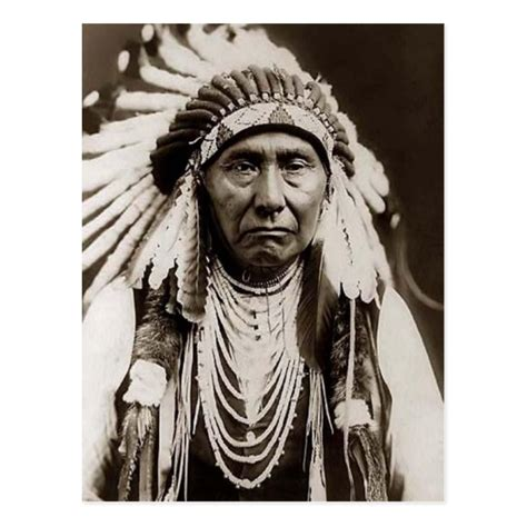 Indian Chief Picture by American Indian Chief Vintage Photo Postcard