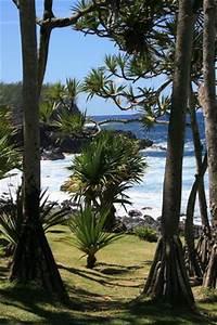 les 25 meilleures idees de la categorie vue de la fenetre With nice maison de la fenetre 5 fenetre avec vue sur la mer photo gratuite images