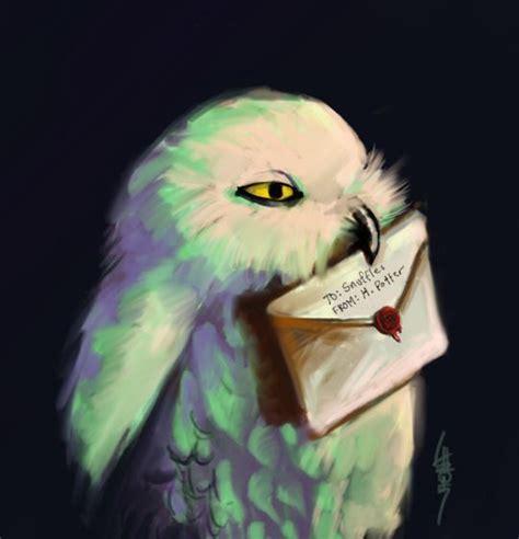 Harry Potter Wallpaper Hedwig Owl by 195 Best Harry Potter Owls Images On Owl Owls