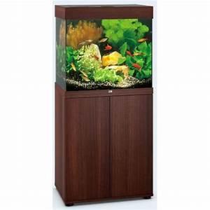Aquarium 120l Mit Unterschrank : juwel aquarium lido 120 61x41x58 120l 2x24w filter 500l h ~ Frokenaadalensverden.com Haus und Dekorationen
