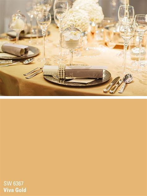 sherwin williams paint color viva gold sw 6367