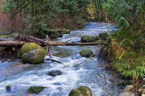 leau ruisseau nature photo gratuite sur pixabay
