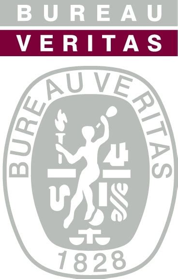 bureau veritas com bureau veritas logo free vector in adobe illustrator ai