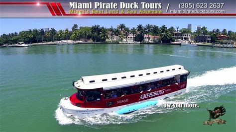 Duck Boat Tours Boston Discount Code by 17 Best Ideas About Duck Tour On Boston Tour