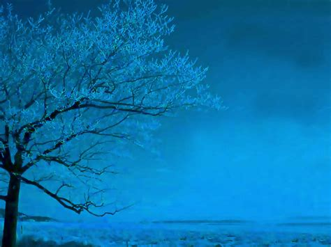 Blue Tree Wallpaper by Tree In Light Blue 1001 Christian Clipart