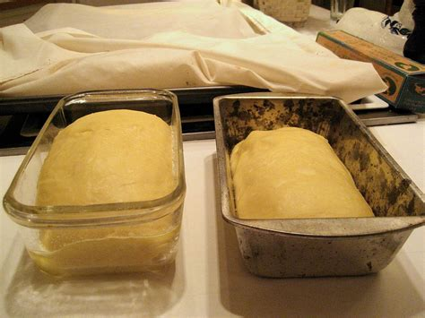 Proofing (baking technique) Wikipedia