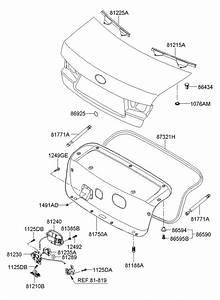 812150a000 - Hyundai Seal Strip Assembly