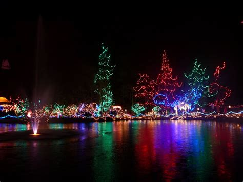 panoramio photo of festival of lights at van dusen
