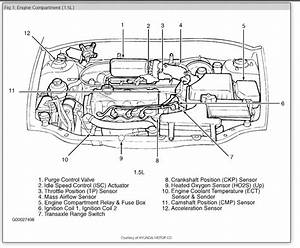 Hyundai V 6 Engine Diagram  U2022 Downloaddescargar Com
