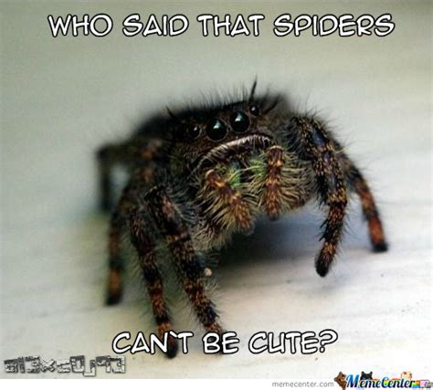 Cute Spider Memes - cute spider by al3xc0j93 meme center