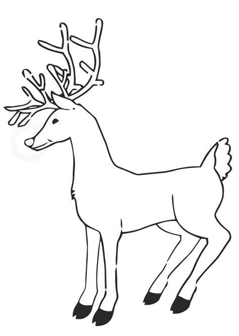 bilde  fargelegge reinsdyr bil