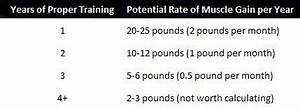 How Fast Can You Build Muscle Key Muscle Growth Facts