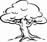 Tree Coloring Oak sketch template
