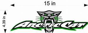 "Arctic Cat BITE Logo / GREEN / 15"" Vinyl Vehicle ..."